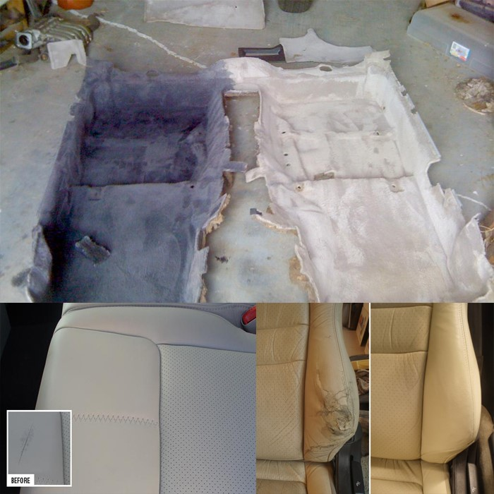 seat carpet dyeing